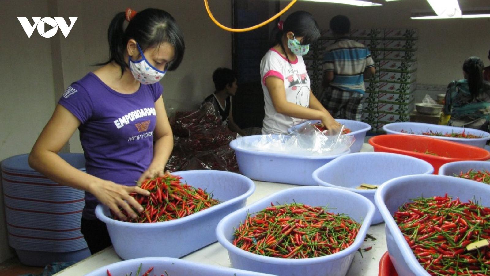Nhiều mặt hàng nông sản lên giá, người dân phấn khởi