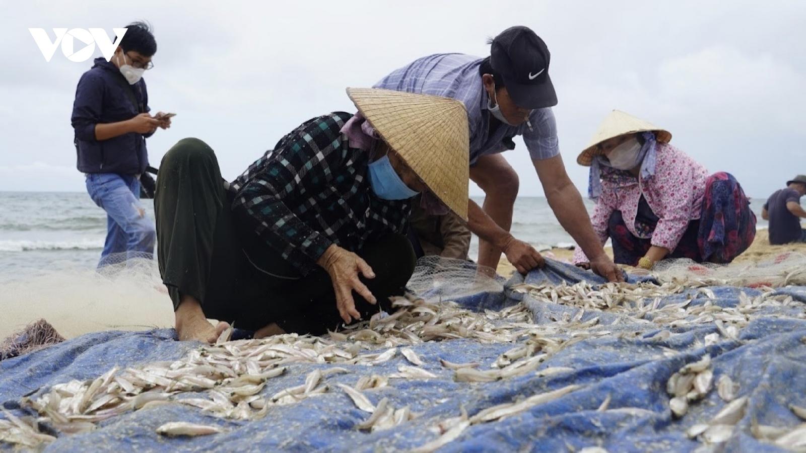 Ngư dân Bà Rịa - Vũng Tàu thu nhập tiền triệu khi được ra khơi sau giãn cách