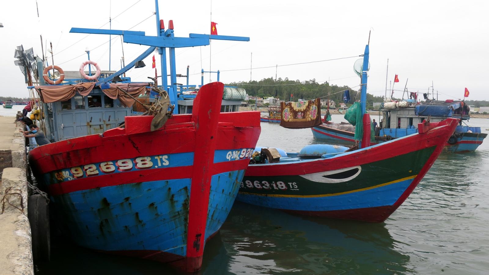 Quảng Ngãi mở cửa cảng cá, tạo thuận lợi cho ngư dân tiêu thụ hải sản