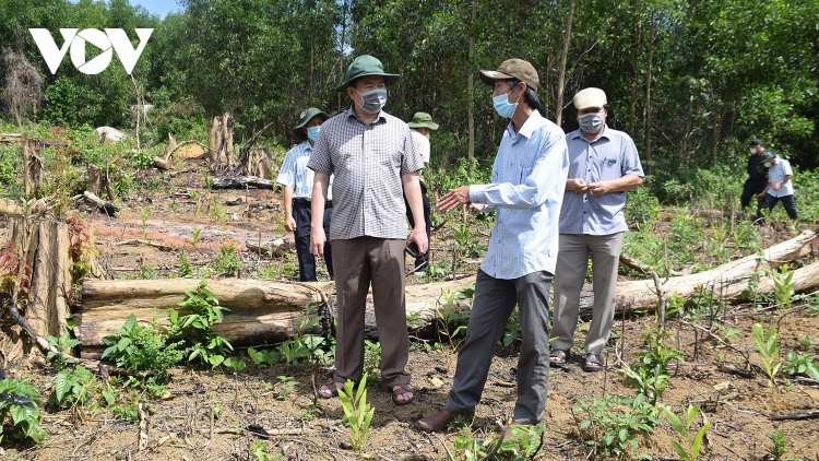Chủ tịch UBND tỉnh Phú Yên kiểm tra hiện trường rừng phòng hộ Sơn Hòa bị tàn phá