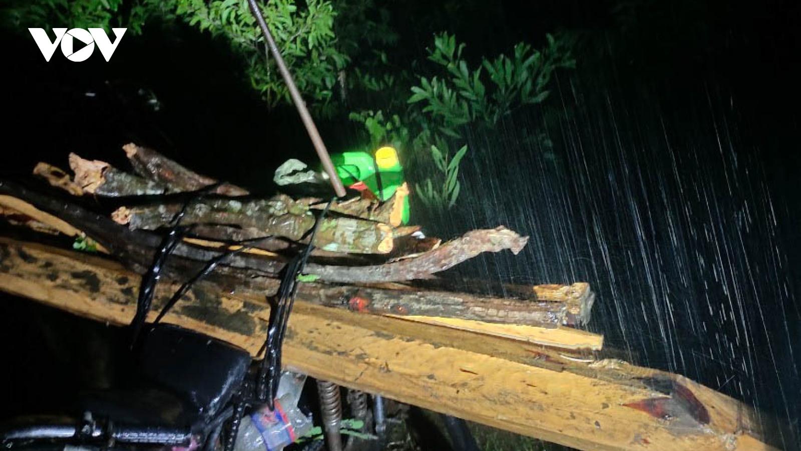 Đắk Lắk đề nghị Gia Lai phối hợp ngăn chặn lâm tặc phá rừng bảo tồn Ea Sô
