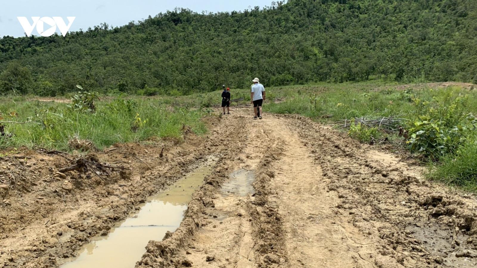 """Vụ phá 34,6 ha rừng phòng hộ: Kỷ luật nhiều cán bộ, khởi tố vụ án """"huỷ hoại rừng"""""""