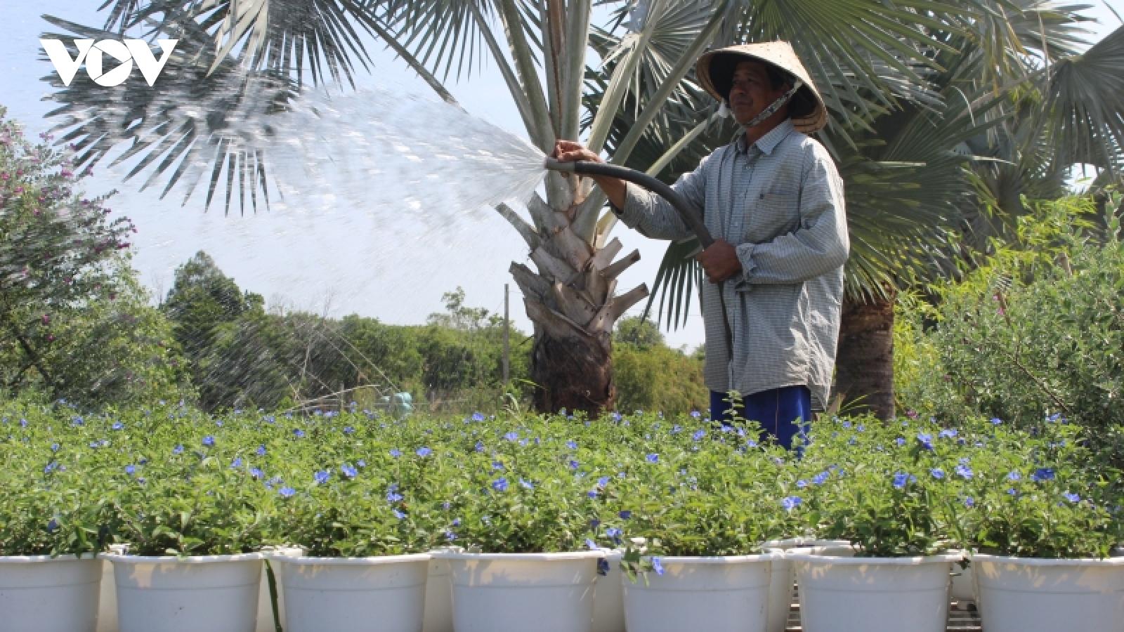 Người lao độngbị ảnh hưởng dịch tại Vĩnh Long được vay 100 triệu đồng để tái sản xuất
