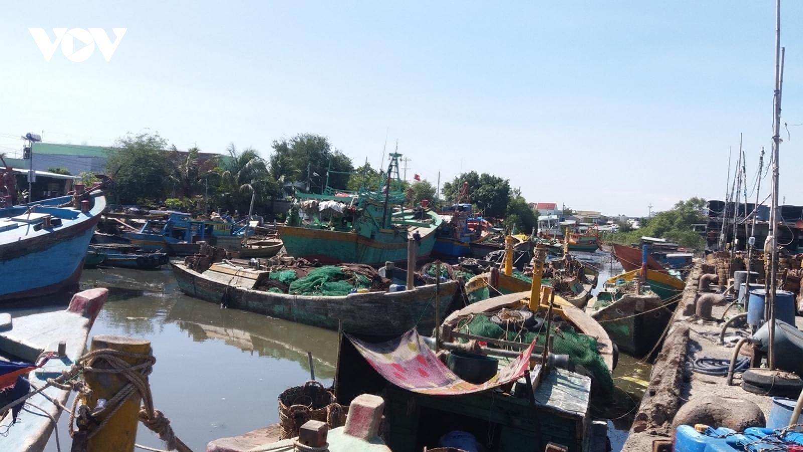 Tiêu thụ hải sản gặp khó, hơn nửa số tàu cá Tiền Giang nằm bờ