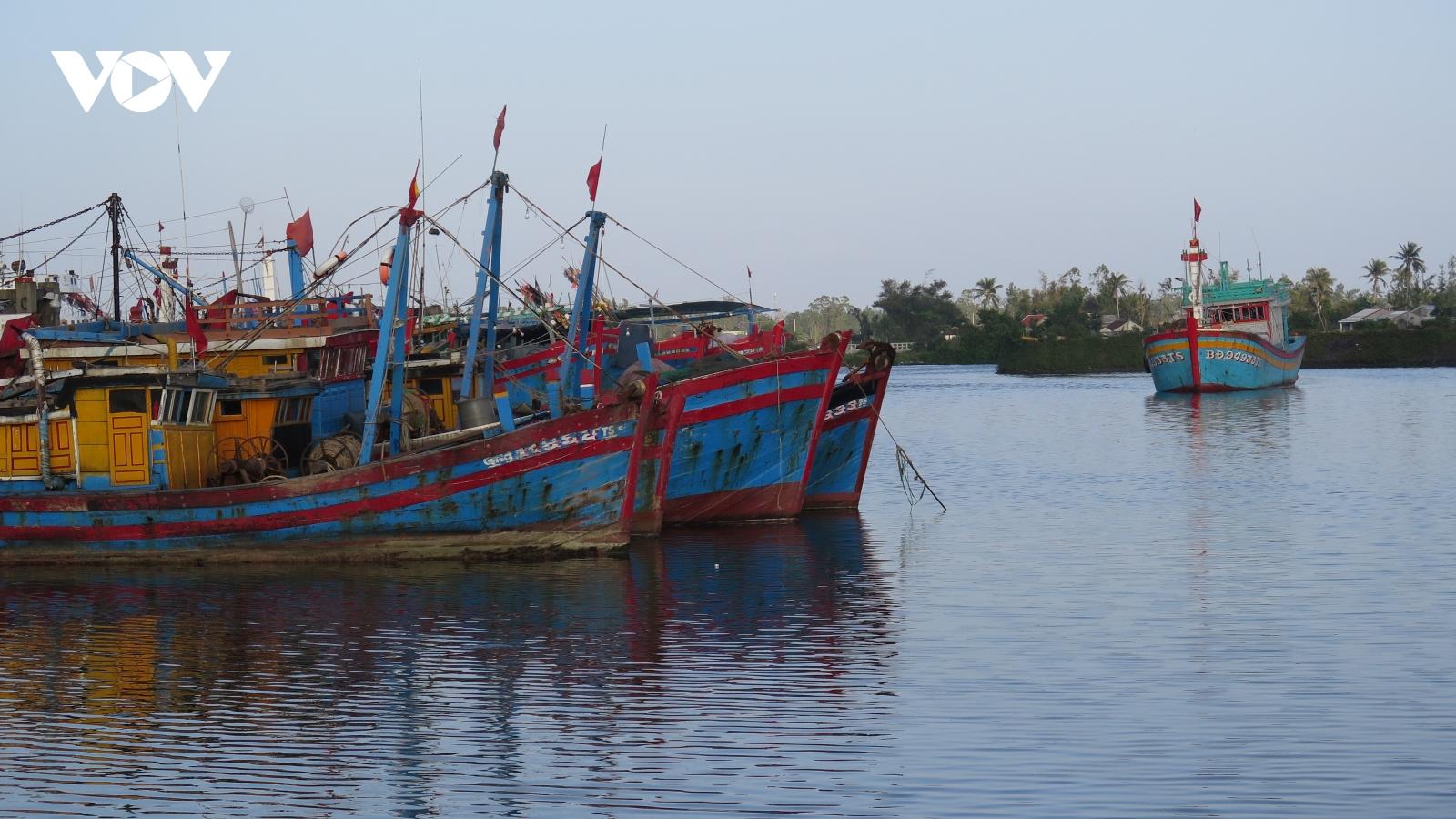 Tước chứng chỉ 10 thuyền trưởngdo ngắt thiết bị giám sát hành trình