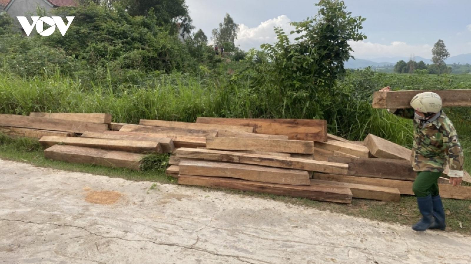 Phú Yên tạm đình chỉ công tác nhân viên bảo vệ rừng vì tàng trữ hơn 155 khúc gỗ