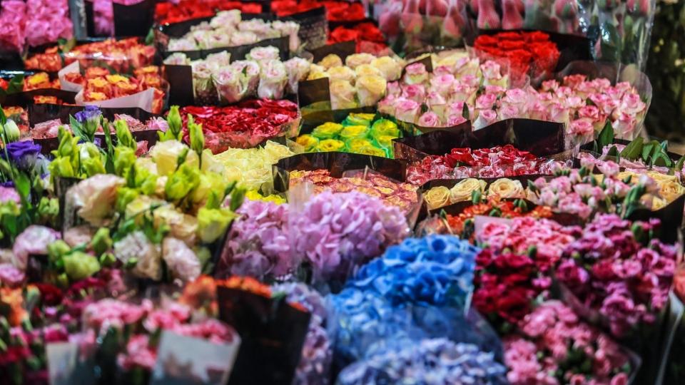 Largest flower market in Hanoi busy ahead of Vietnamese Women's Day