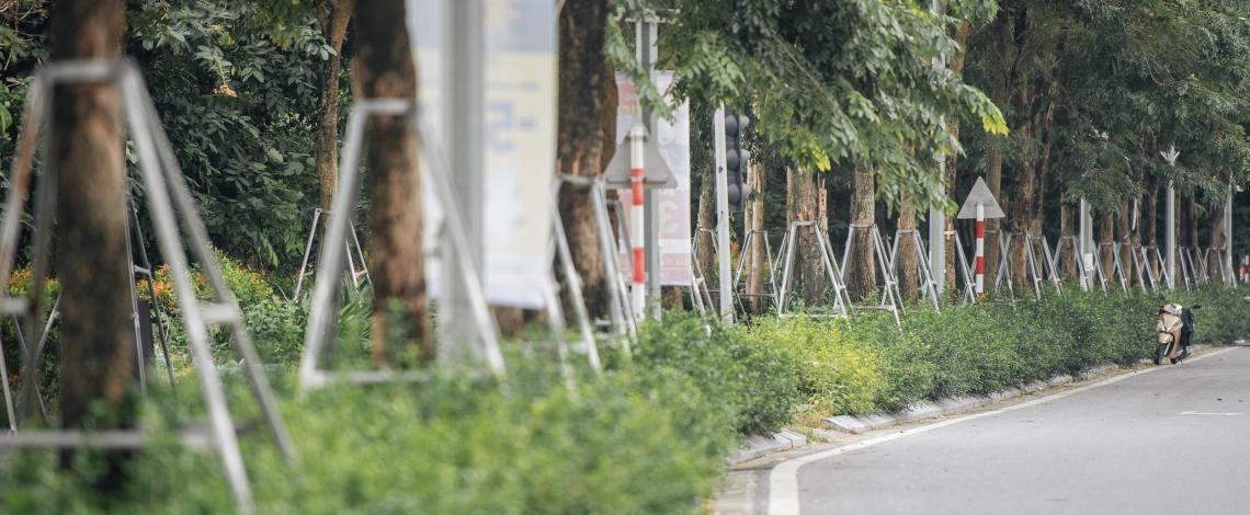"""Hàng cây xanh bị khung sắt """"bóp nghẹt"""" trên đường Phạm Văn Đồng, Hà Nội"""