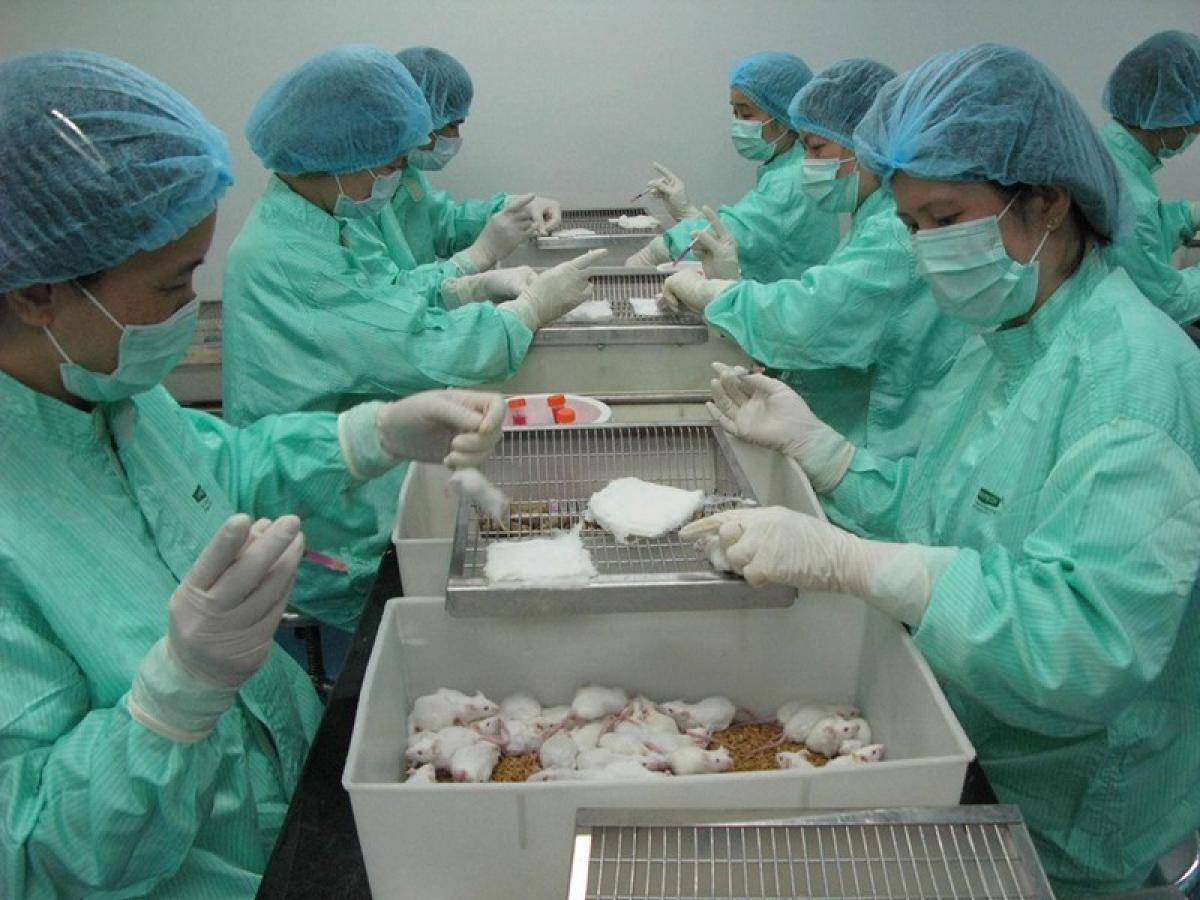 thí nghiệm vaccine