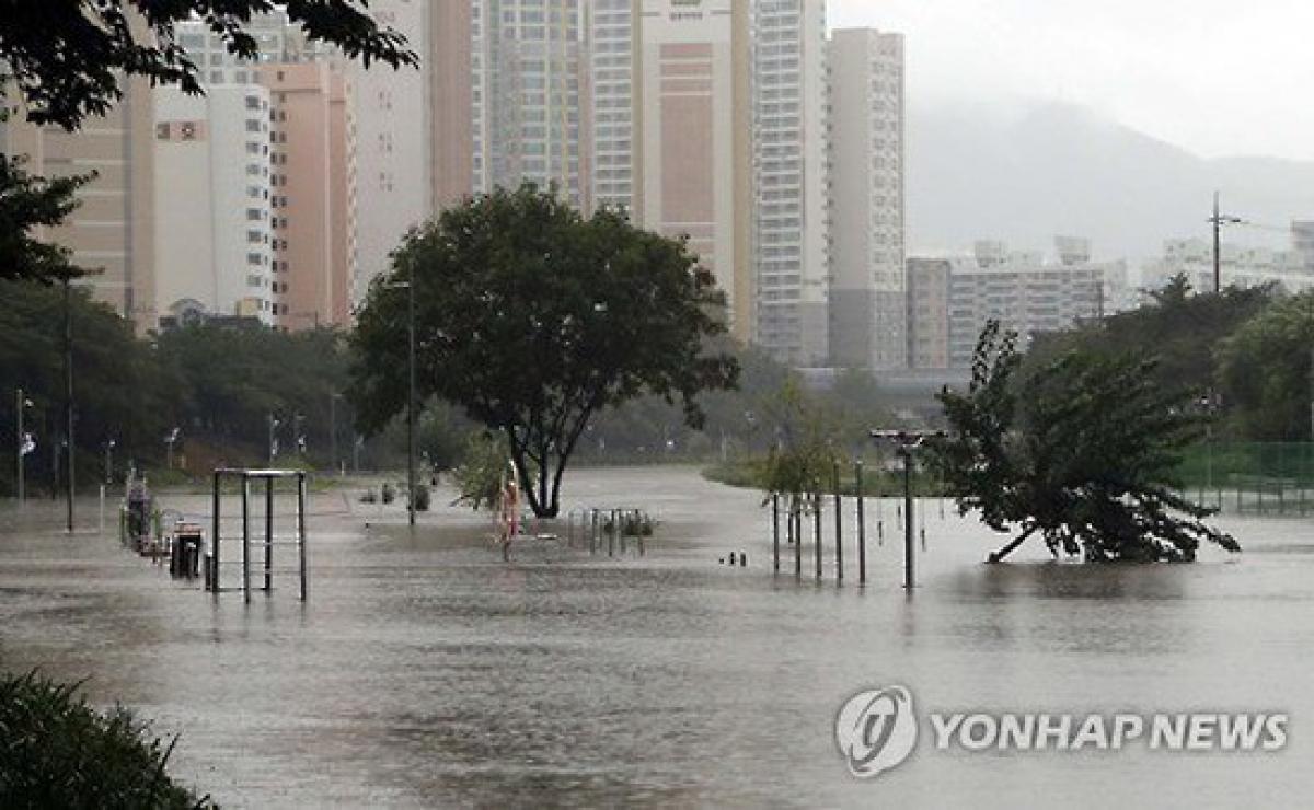 Lũ lụt tại Hàn Quốc. Ảnh: Yonhap