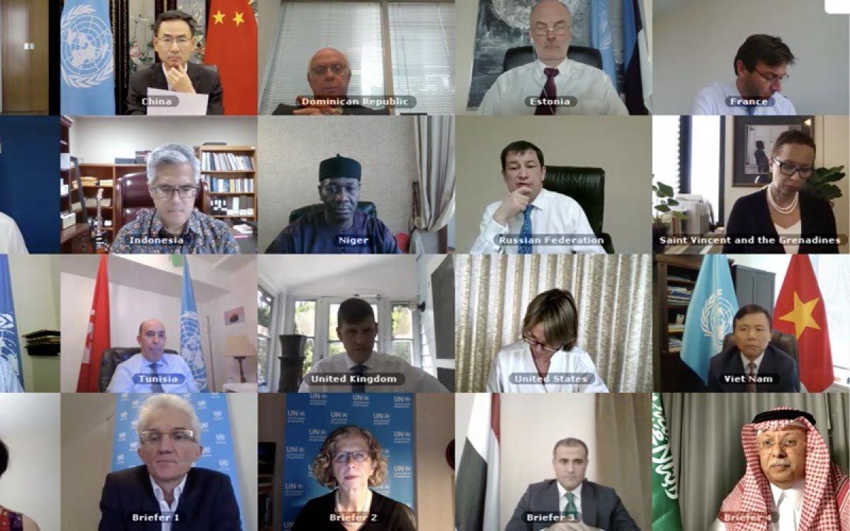 Hội đồng Bảo an họp trực tuyến.