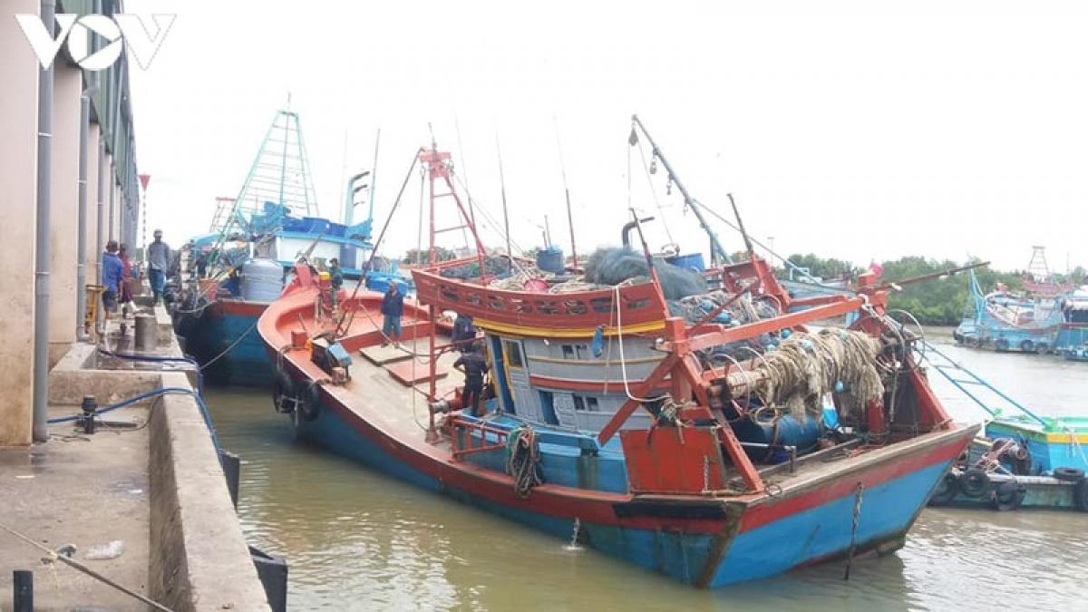 Cảng cá Vàm Láng vừa đưa vào hoạt động.