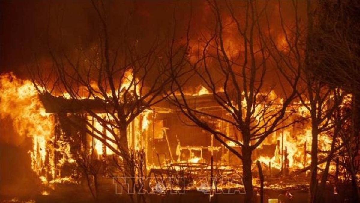 Mỹ đã ban bố tình trạng khẩn cấp tại bang California do cháy rừng (Ảnh: AFP/TTXVN)