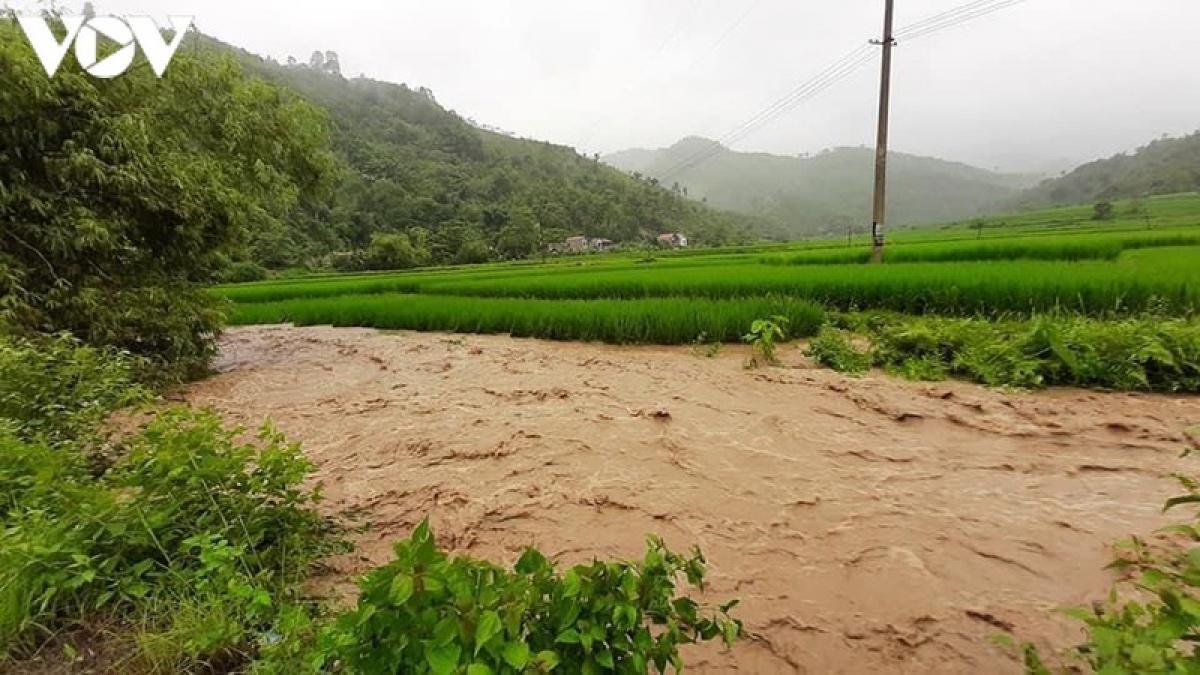 Nhiều diện tích lúa, hoa màu ở huyện Văn Yên bị vùi lấp, ngập úng.