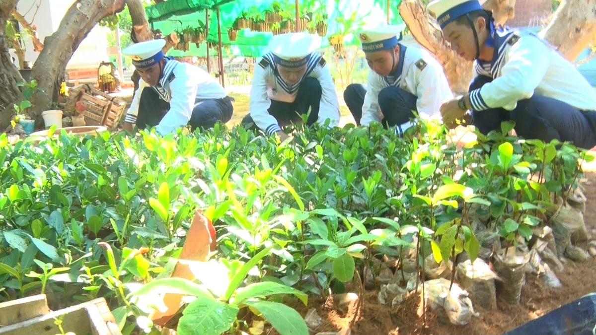 Vườn ươm thanh niên của đảo Trường Sa.
