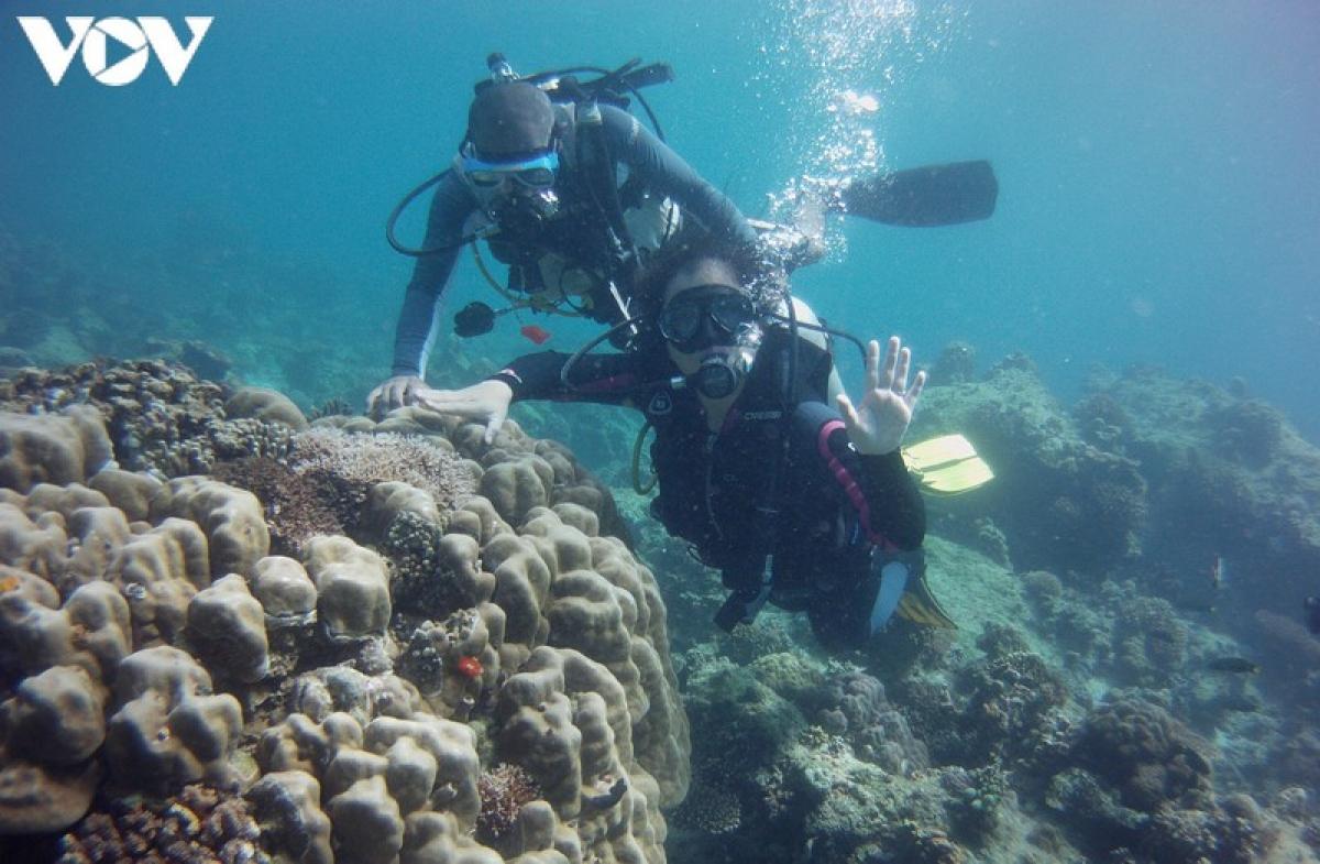 Hầu như san hô đều nằm ở quanh đảo và được người dân quý trọng bảo vệ gần như nguyên vẹn nên hầu hết vẫn giữ được sự tự nhiên vốn có.