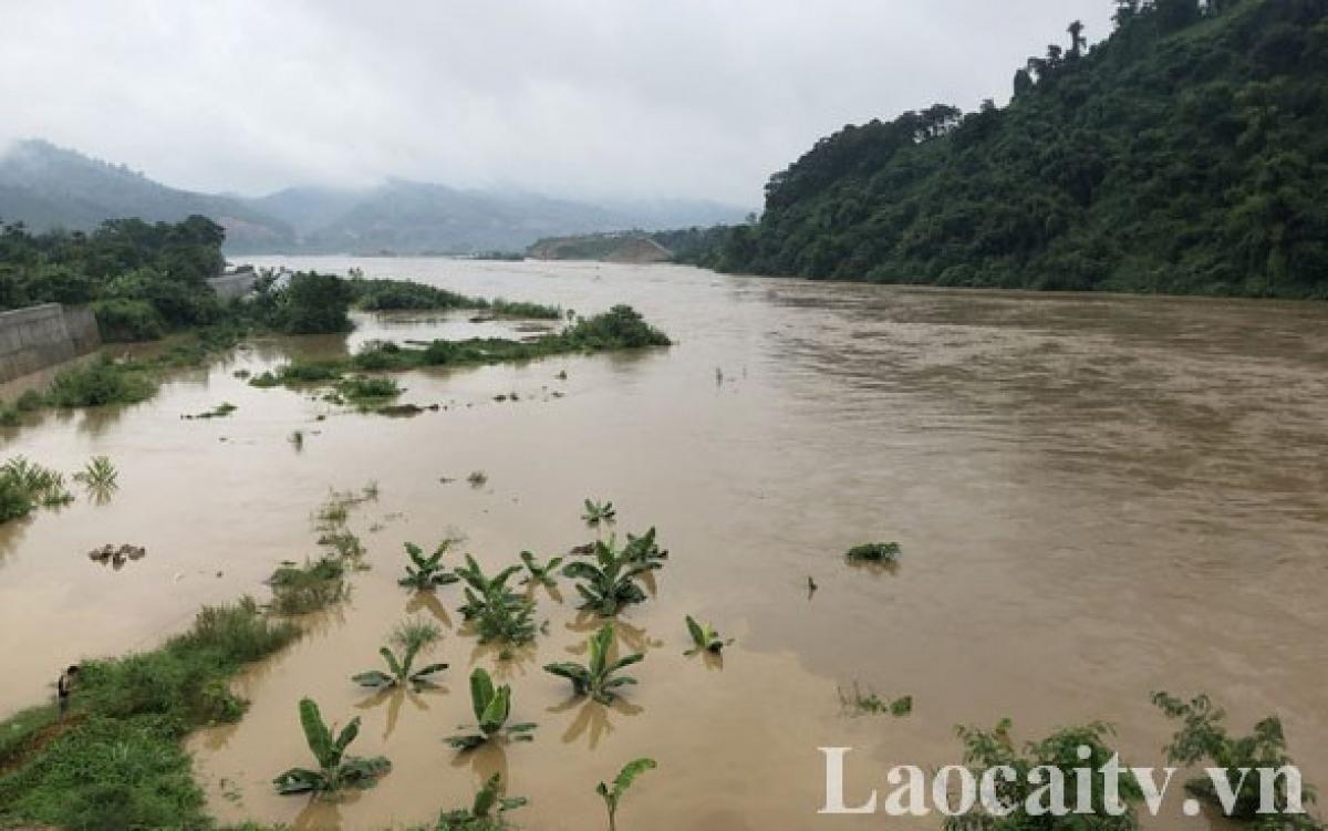 Tôi 20/8, mực nước trên sông Hồng sẽ dâng cao. (Ảnh:báo Lào Cai).