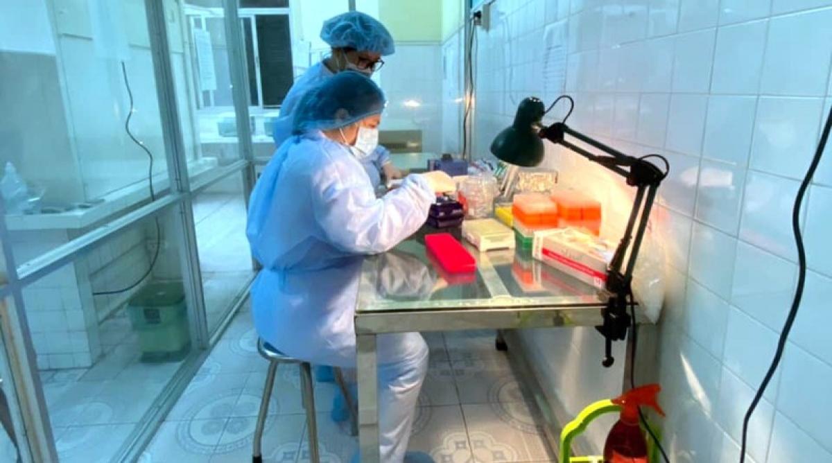 Trong ngày 1/8, thành phố Hải Phòng có 15 trường hợp nghi ngờ mắc Covid-19 đã có kết quả âm tính với virus SARS-CoV-2..