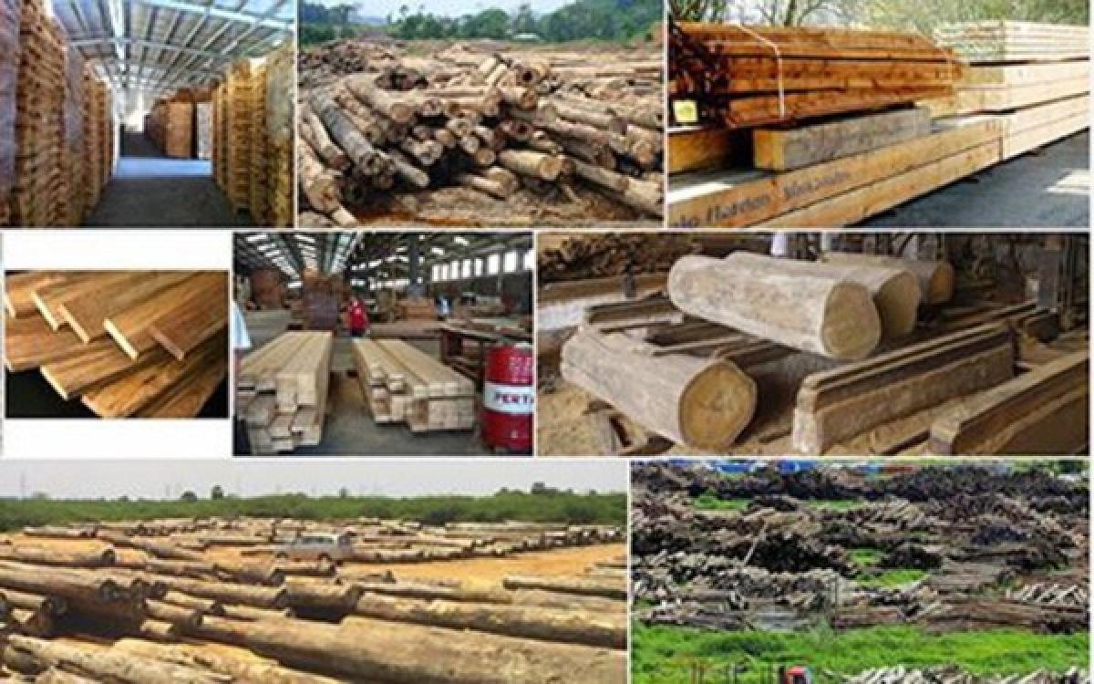 Chế biến gỗ và sản xuất sản phẩm từ gỗ ảnh hưởng mạnh bởi Covid-19.
