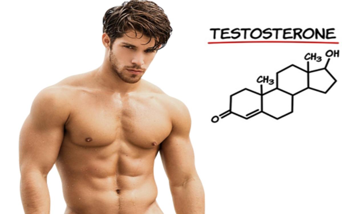 Hoóc môn: Lượng testosterone, estrogen hay ghrelin đều ảnh hưởng đến quá trình giảm cân.