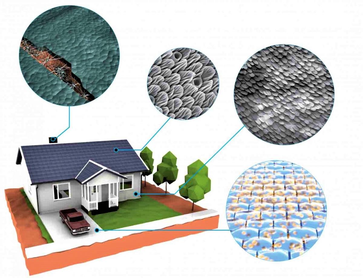 Dự án của DARPA nhằm tạo ra các vật liệu xây dựng có thể tự hồi phục trong trường hợp bị hư hỏng; Nguồn: N&T