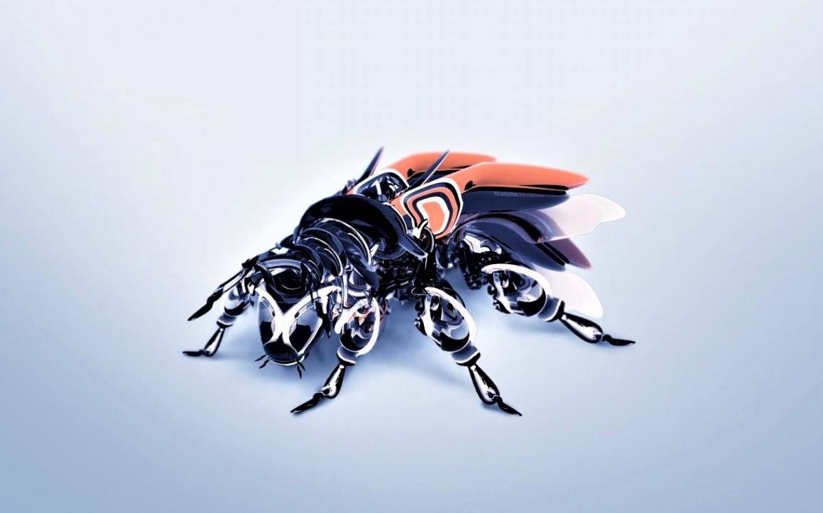 DARPA có chương trình nhằm tạo ra các con bọ phục vụ mục đích trinh sát; Nguồn: N&T