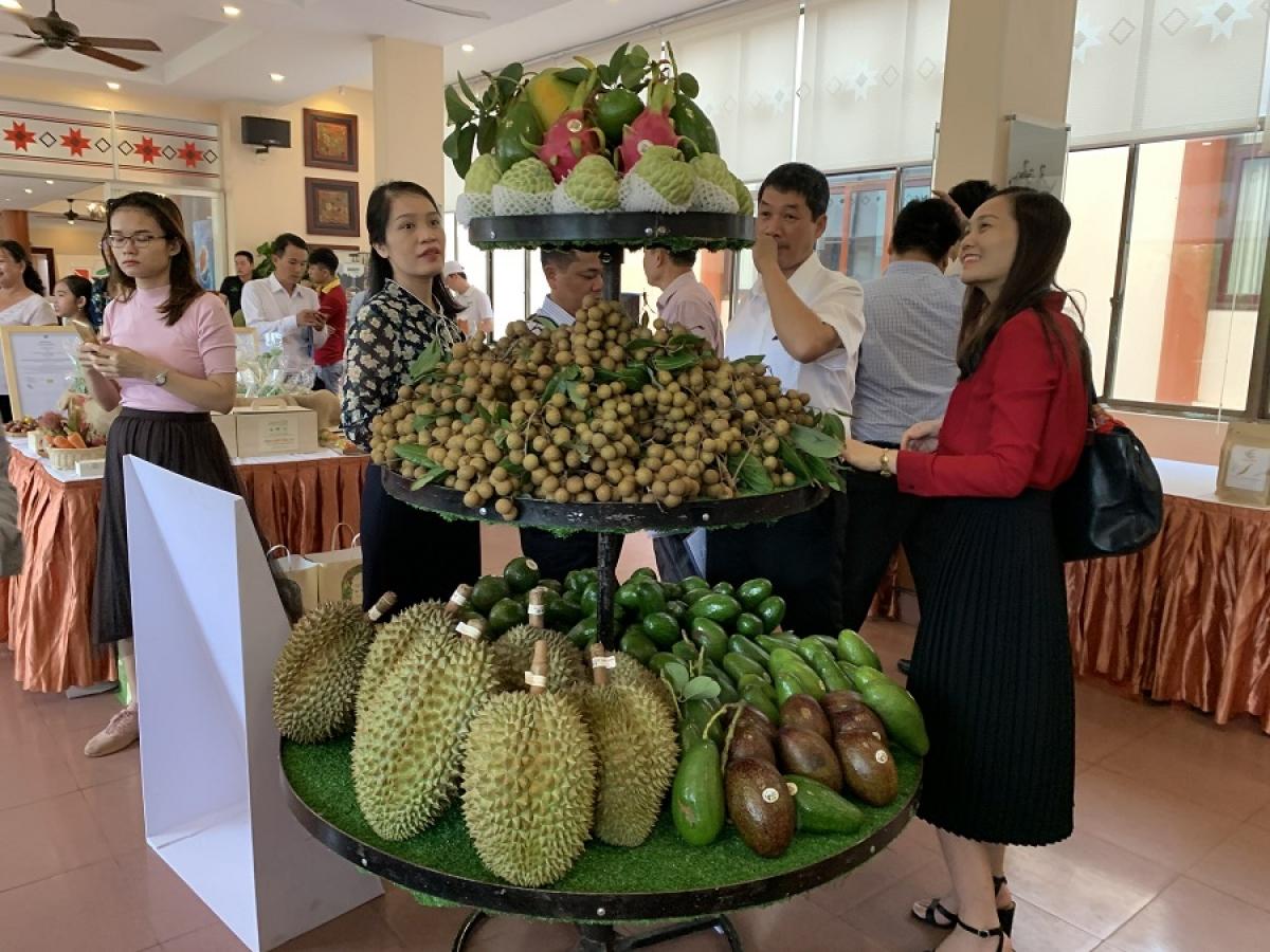 Trái cây của Đắk Lắk được trưng bày giới thiệu tại hội nghị về nâng cao chất lượng nông sản của Bộ NN&PTNT