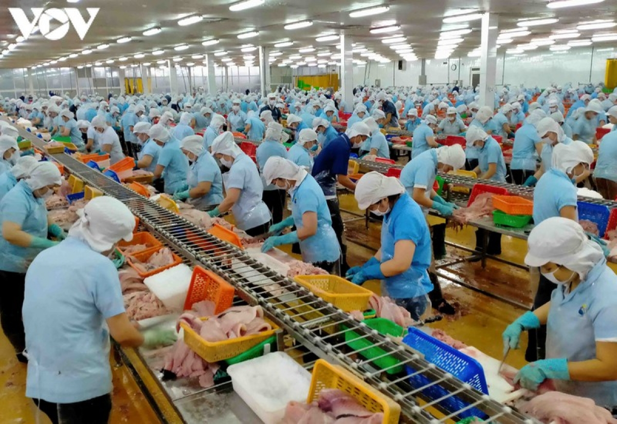 12 Vietnamese enterprises are permitted to re-export their seafood products to the Saudi Arabian market