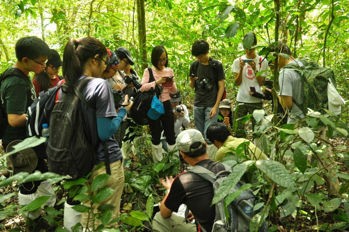Trekking rừng Cúc Phương. Ảnh: CCD