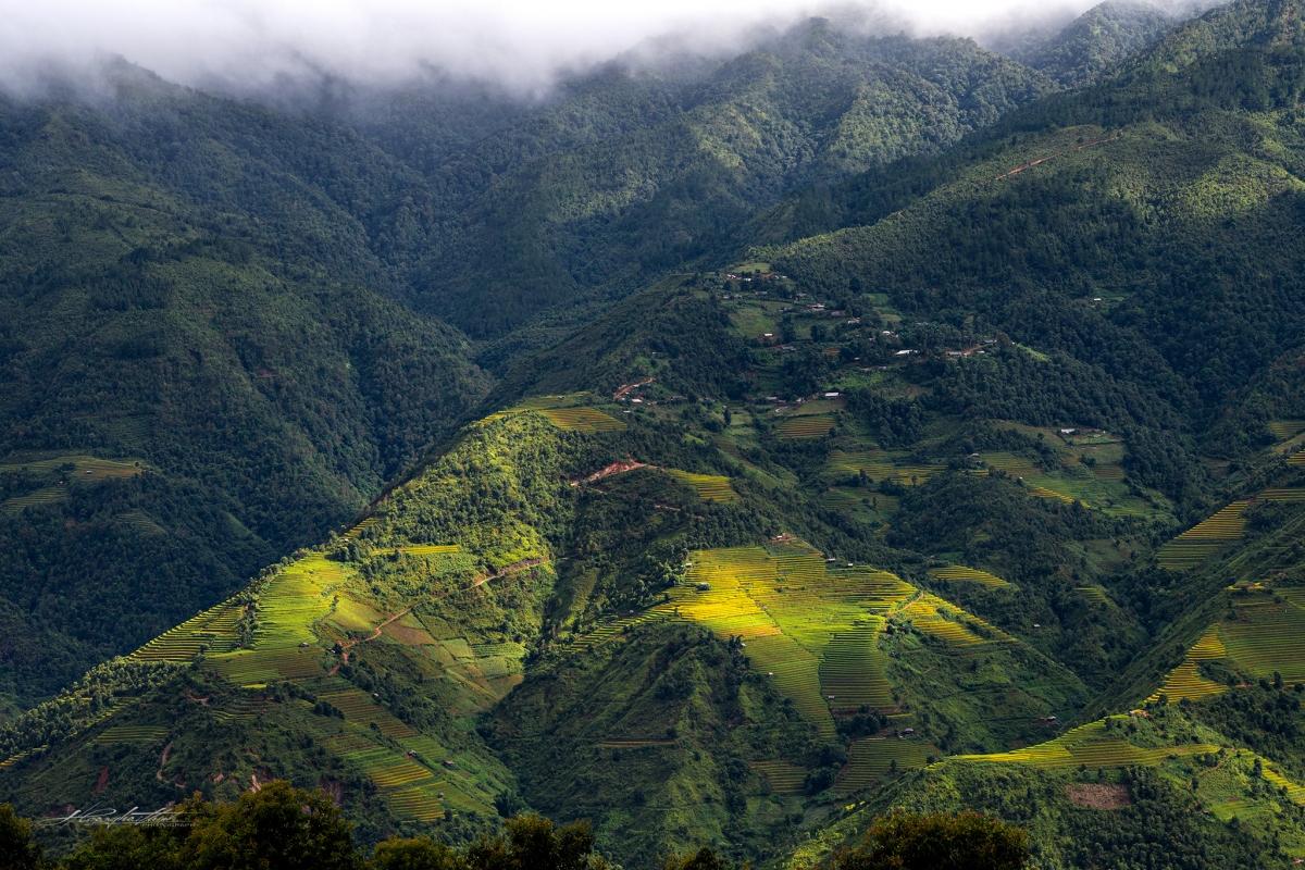 Ruộng bậc thang đã trở thành nét văn hóa đặc trưng riêng của vùng đất Mù Cang Chải.