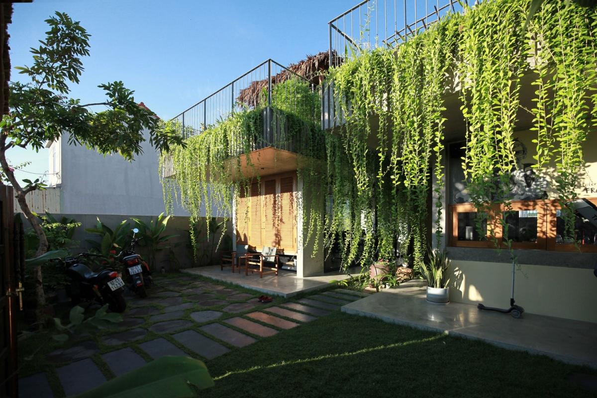 Cây trồng trên mái, giúp giữ lại một phần nước mưa và là tấm chắn nhiệt tuyệt vời khi trời nắng.