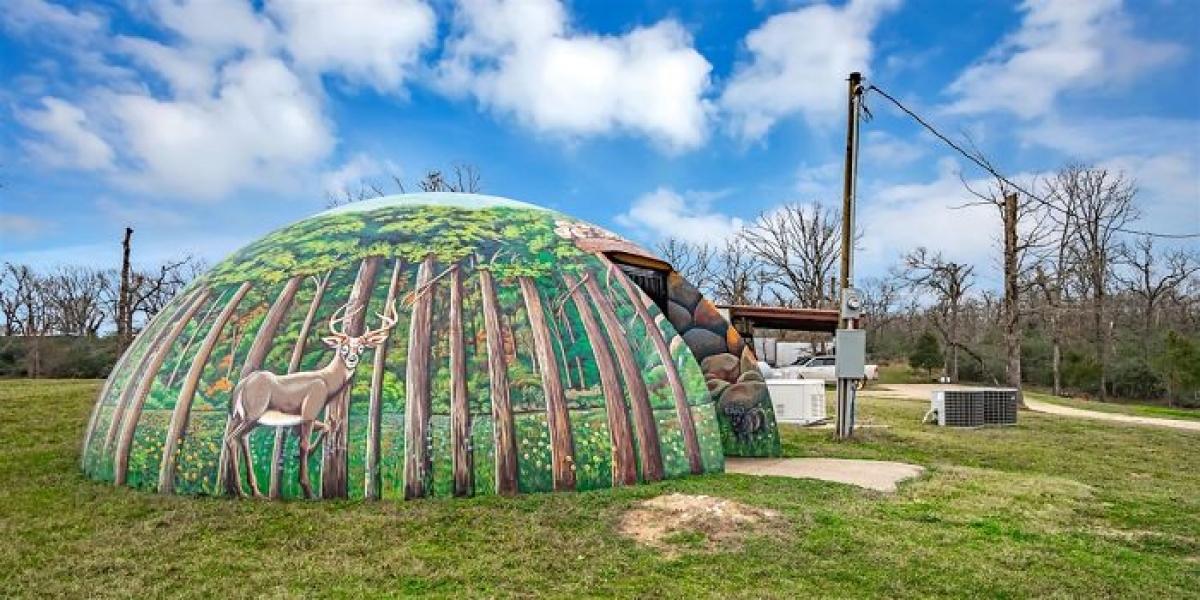 Ngôi nhà được xây hoàn toàn dưới lòng đất này nằm ởBuffalo, Texas (Mỹ).