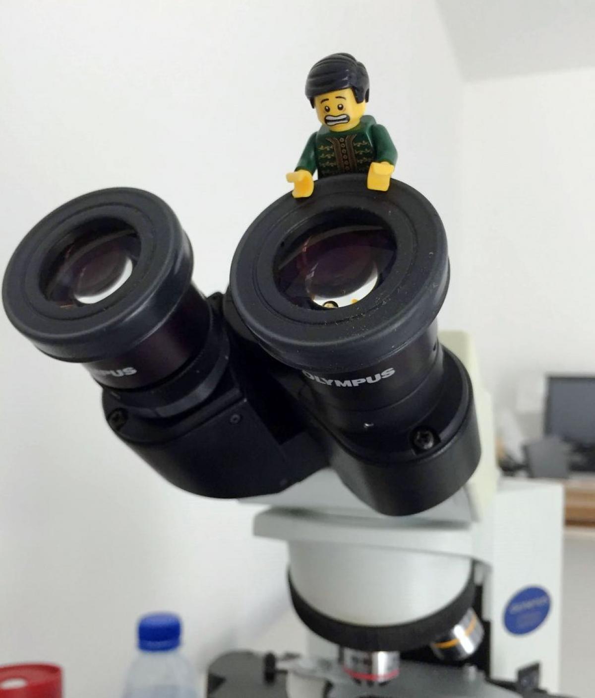 Sử dụng thành thạo kính hiển vi./.