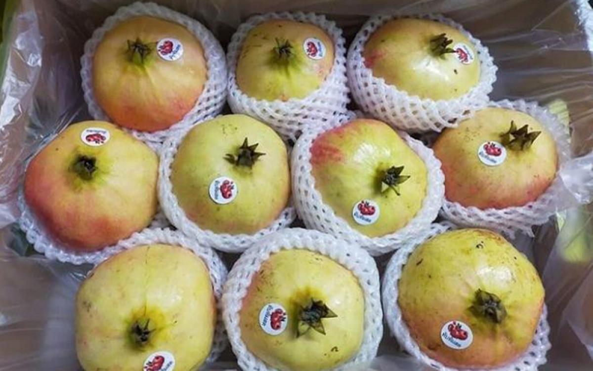 Măm nay lựu Trung Quốc về chợ nhiều hơn so với năm ngoái. Ngoài dòng sản phẩm lựu truyền thống trái nhỏ, hạt màu hồng nhạt thì có thêm hàng nội địa cao cấp từ Trung Quốc. Đó là dòng lựu Tunisia, trái nặng từ 300-600 gram giá 90.000-110.000 đồng/kg. Loại này ruột đỏ và ngọt hơn so với dòng thông thường. (Ảnh: VnExpress)