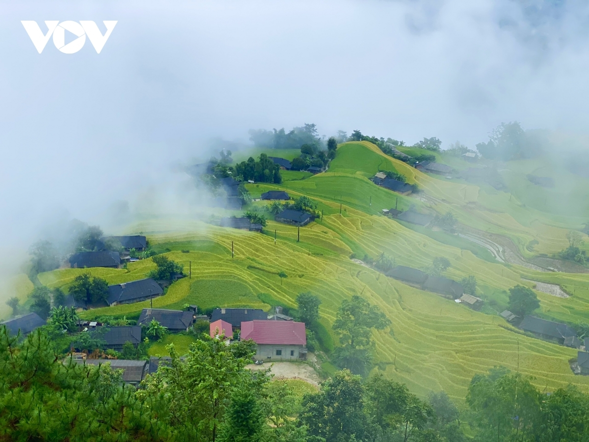 Hoang Su Phi district in Ha Giang province is located approximately 300km from Hanoi. The terraced fields in the mountainous area are similar to a scene from a fairytale and are a worthy gift for tourists who must overcome plenty of obstacles on a long road in order to reach the site.