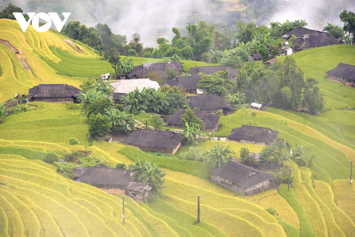 Houses offer homestay services in Phung hamlet and are ideal places in which guests can enjoy whilst taking a trip to the mountainous area.