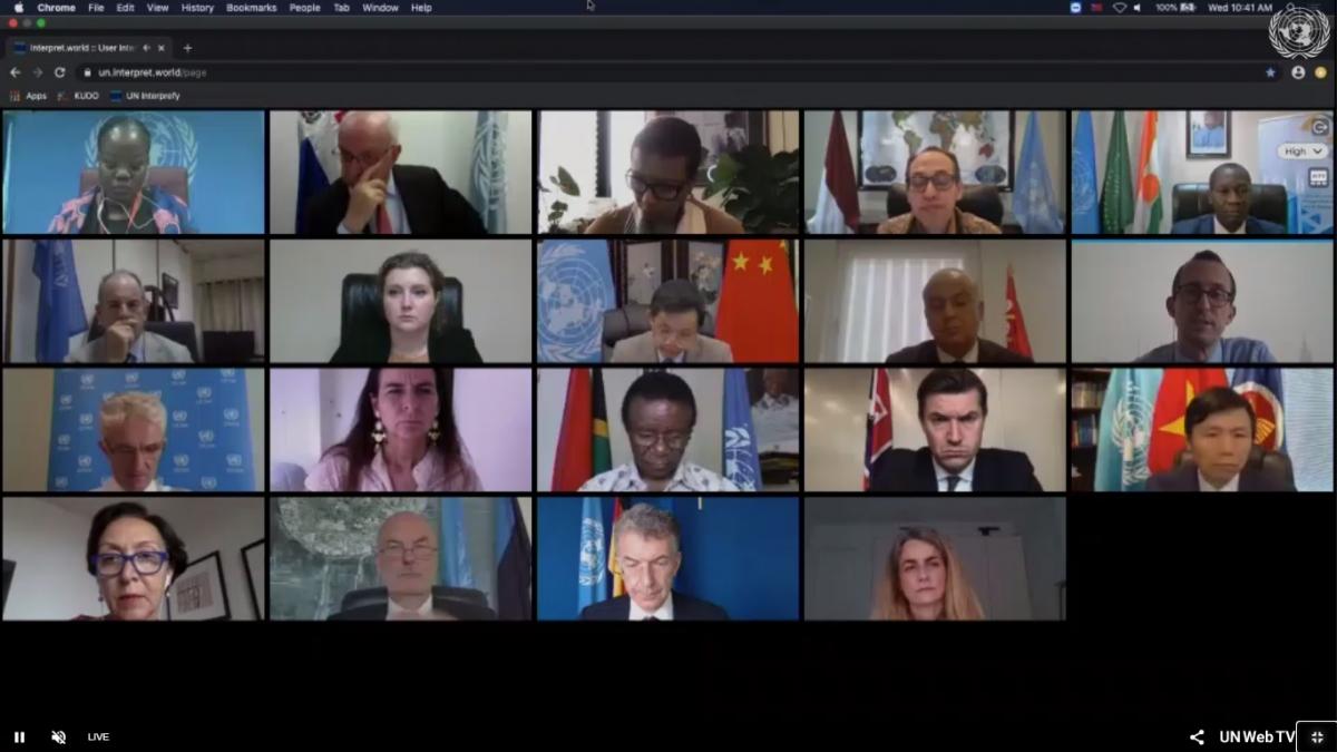 Hội đồng Bảo an Liên hợp quốc họp trực tuyến về tình hình Nam Sudan.