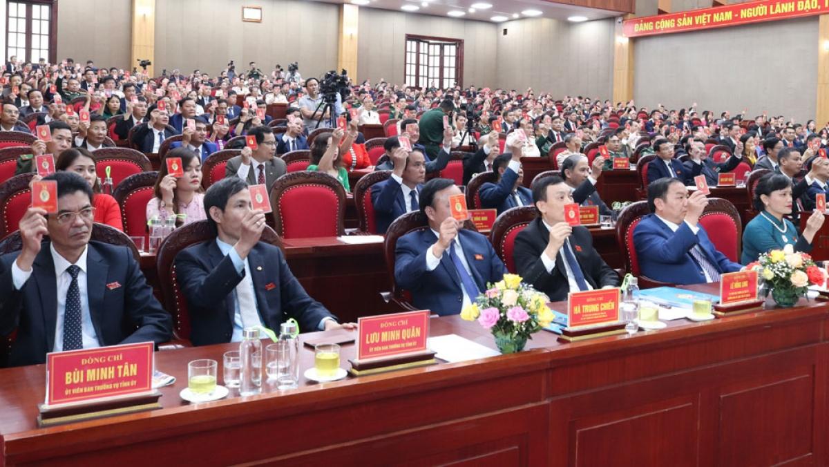 Các đại biểu biểu quyết