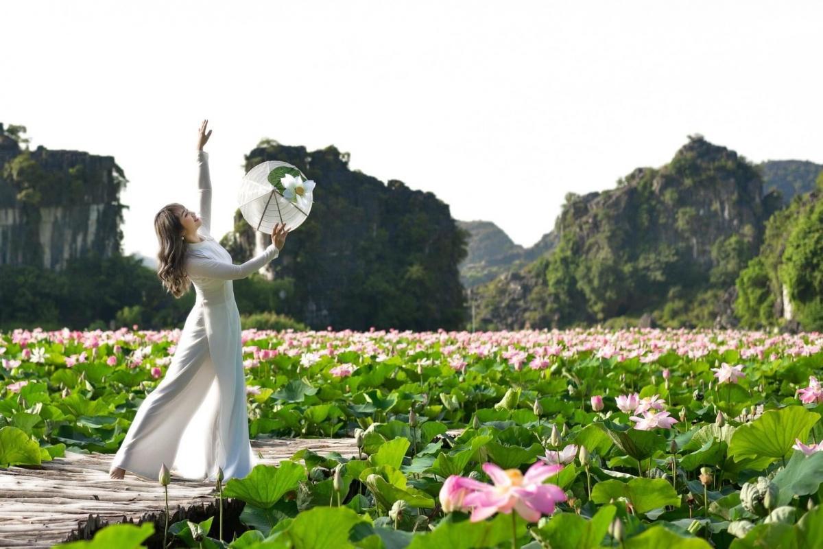 Những bức ảnh về hồ sen Hang Múa cũng thường xuyên xuất hiện trên nhiều hội nhóm chuyên review về du lịch.