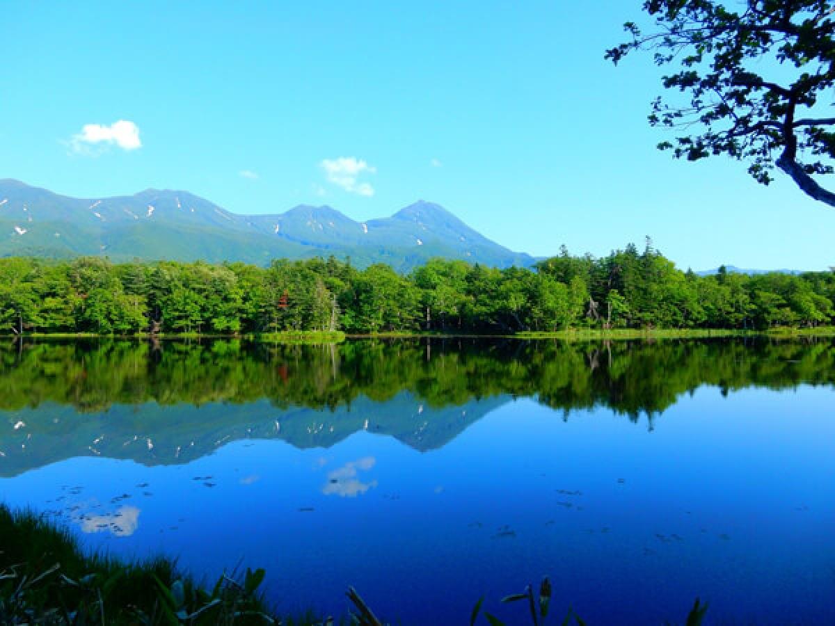 """Bán đảo Shiretoko nhô ra từ biển Okhotsk ở Đông Bắc của Hokkaido; được coi là vùng đất hoang sơ cuối cùng chưa được khám phá của Nhật Bản. Toàn bộ khu vực này là công viên quốc gia, với các loài động vật hoang dã như chim cốc biển và đại bàng đầu trọc sinh sống ở những vùng núi hiểm trở được bao phủ bởi rừng nguyên sinh. Ngũ hồ của Shiretoko được gọi là """"Ngũ bảo"""", với quần thể 5 hồ nước nhỏ, yên tĩnh được bao quanh bởi khu rừng nguyên sinh."""