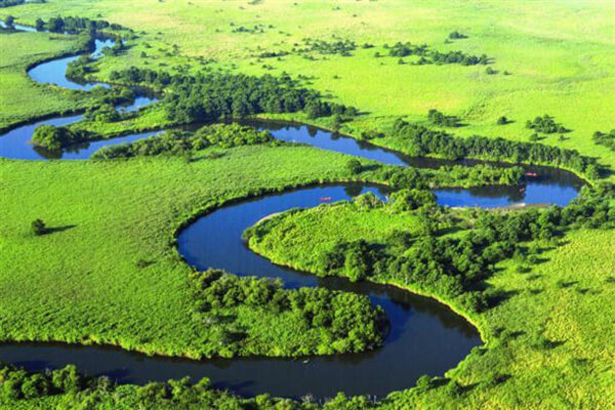 Công viên quốc gia rừng ngập nước Kushiro là vùng đất ngập nước rộng lớn với diện tích khoảng 183 km vuông. Có khoảng 2 nghìn loài động thực vật sống ở đây, trong đó có những loài động vật quý hiếm như đại bàng đầu trọc, hươu Ezo. Bạn còn có thể ngắm muôn loài hoa đua sắc vào mùa hè và đến thăm di tích tự nhiên đặc biệt Danhak vào mùa đông.