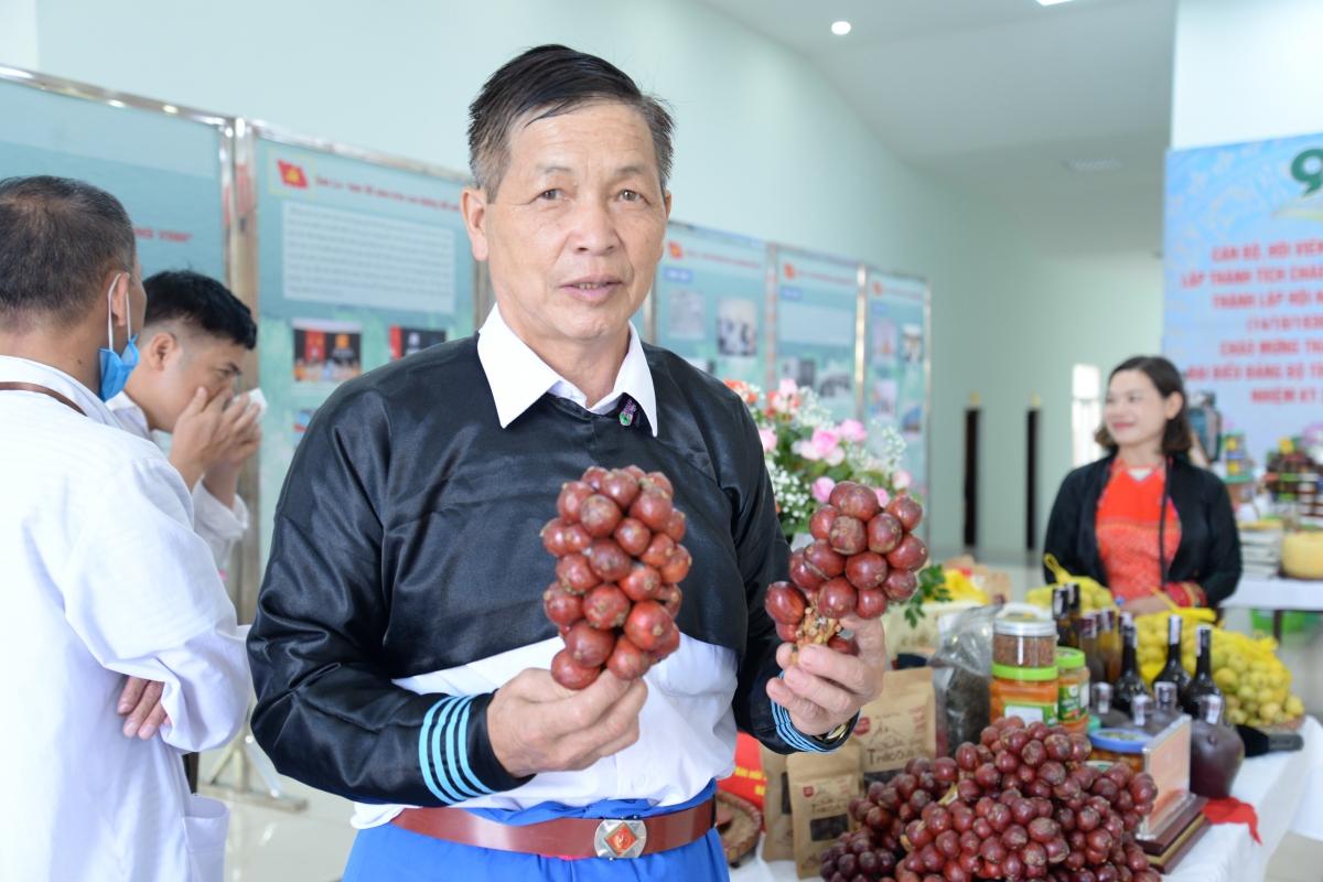 Gia đình ông Giàng A Chu thu lãi ổn định từ 200 - 250 triệu đồng mỗi năm.