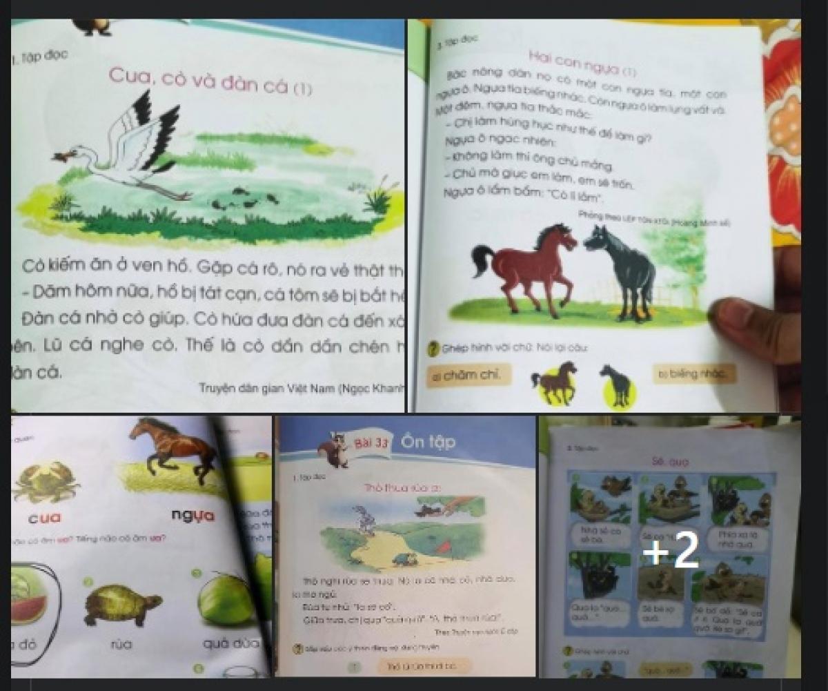 Nhiều chi tiết trong SGK Tiếng Việt lớp 1 thuộc bộ sách Cánh Diều được cho là không phù hợp với học sinh.