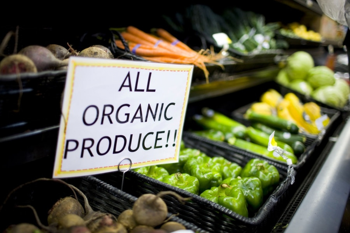 Vietnam shows great potential fororganic agricultural produce exports