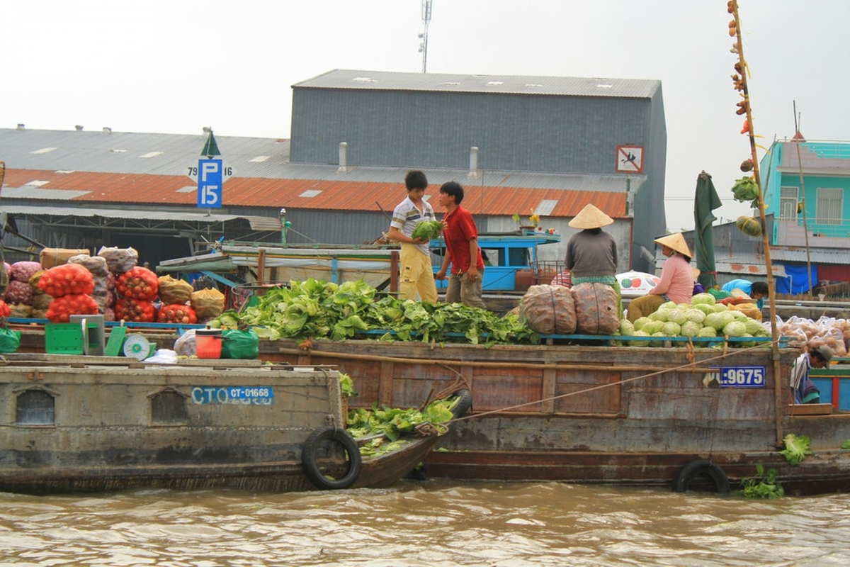 Visiting the floating markets on the Mekong Delta. Seeing the fantastic Mekong Deltafloating markets is an unforgettable experience. The site is a hive of activity with plenty of trading taking place throughout the area's muddied waters, whilst featuring a full spectrum of colours, sights, and sounds.
