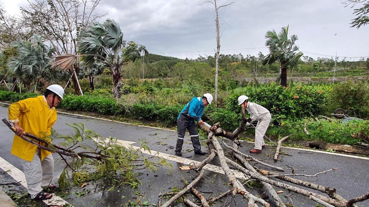 CBCNV Công ty tiến hành thu gom, dọn dẹp sau bão số 9.