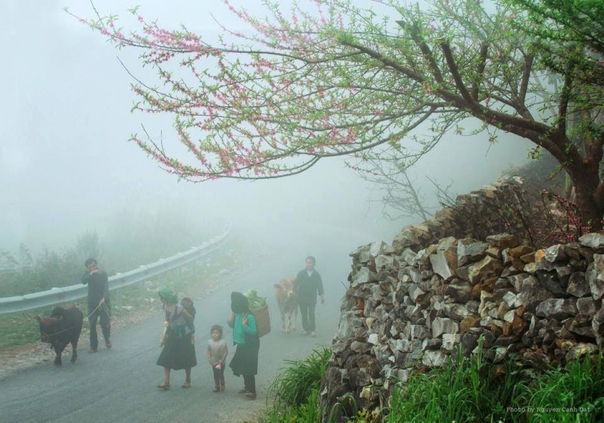Ha Giang province is one of the first places in the nation to endure a cold spell during the autumn.