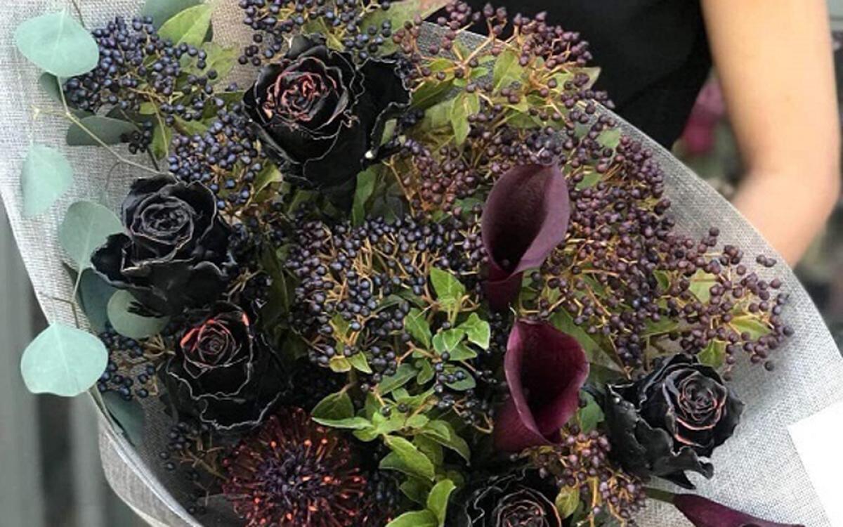 Hoa hồng đen có kích thước tương đương các loại hồng thông thường song lại khác biệt và cuốn hút bởi màu đen huyền bí. Đây là một trong những loại hoa được săn lùng nhiều dịp 20/10 năm nay, giá thành dao động khoảng 500.000 đồng/bông. (Ảnh: Dân Việt)