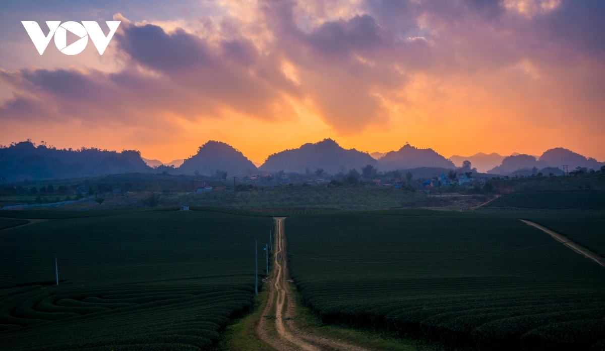 The sun sets on Moc Chau plateau in the northern province of Son La.
