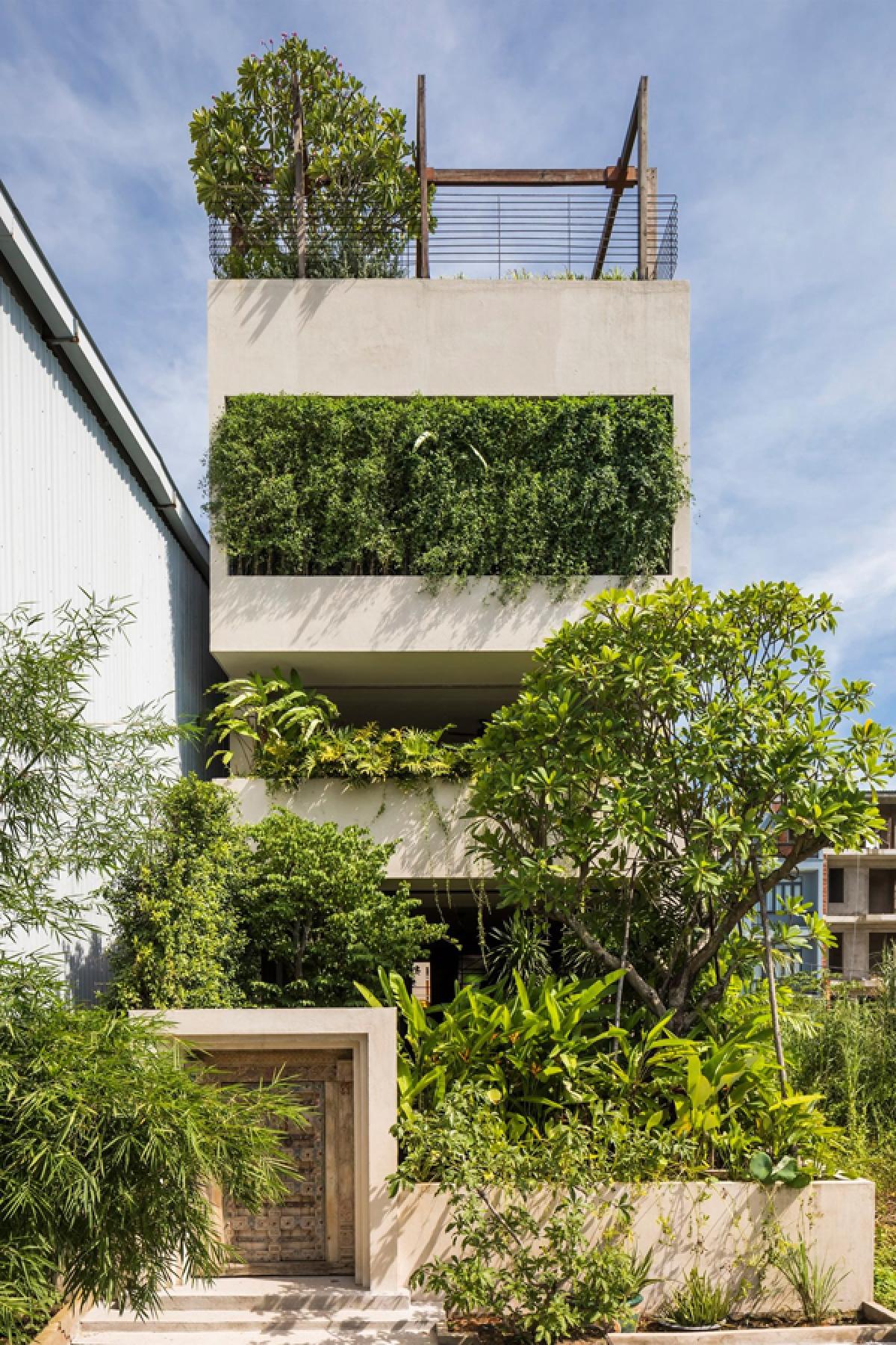 Công trình có cấu trúc một ngôi nhà phố, với diện tích xây dựng 162m2, nằm ở ngoại ô thành phố Hồ Chí Minh. Khoảng sân vườn không rộng nhưng được trồng nhiều cây xanh tươi tốt như một khu rừng. Kiến trúc công trình hiện đại, đơn giản với những mảng khối mạnh mẽ.